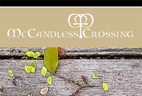 Graphic of McCandless Crossing Logo
